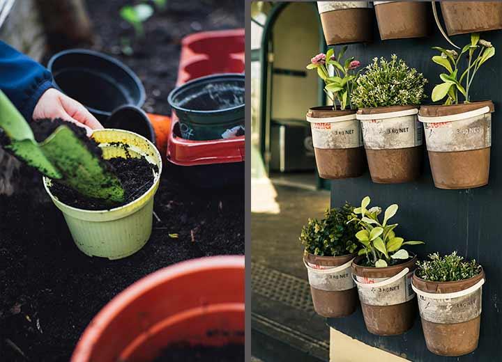 outdoor gardens